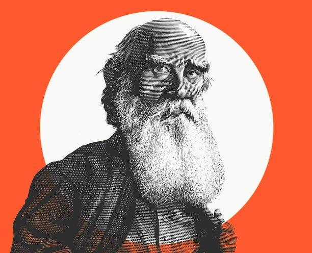 Саморазвитие по Толстому: самоедство, утопия и отрицание настоящего